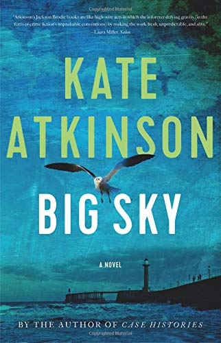 Big Sky  book cover image