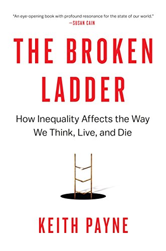 The Broken Ladder book cover image