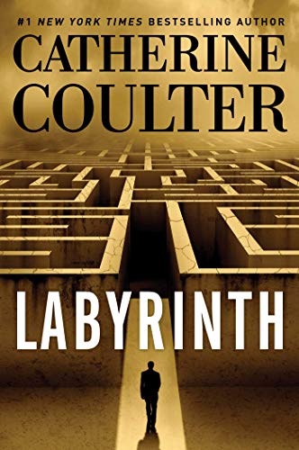 Labyrinth  book cover image